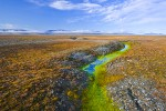 Arctic tundra and melting permafrost